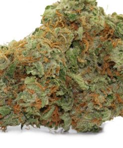 Tangerine Dream Cannabis Strain