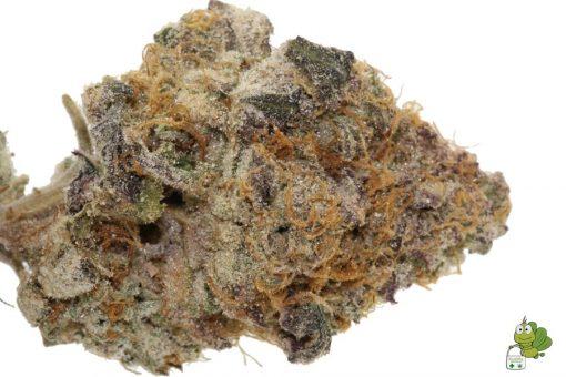 Triangle Mints Cannabis Strain