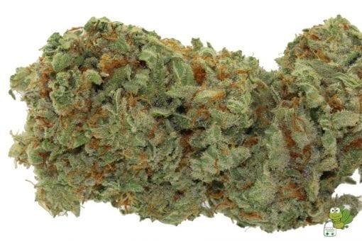 Gorilla OG Cannabis Strain