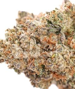 Lemon Drop Cannabis Strain