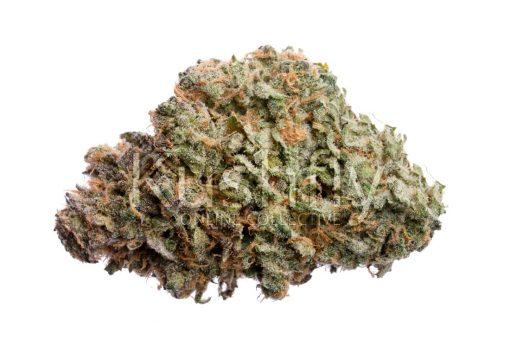 Mango Dream Cannabis Strain
