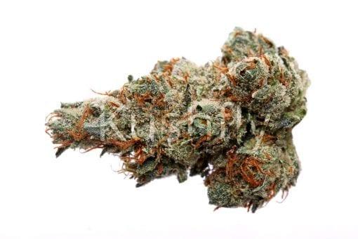Mango Trainwreck Cannabis Strain
