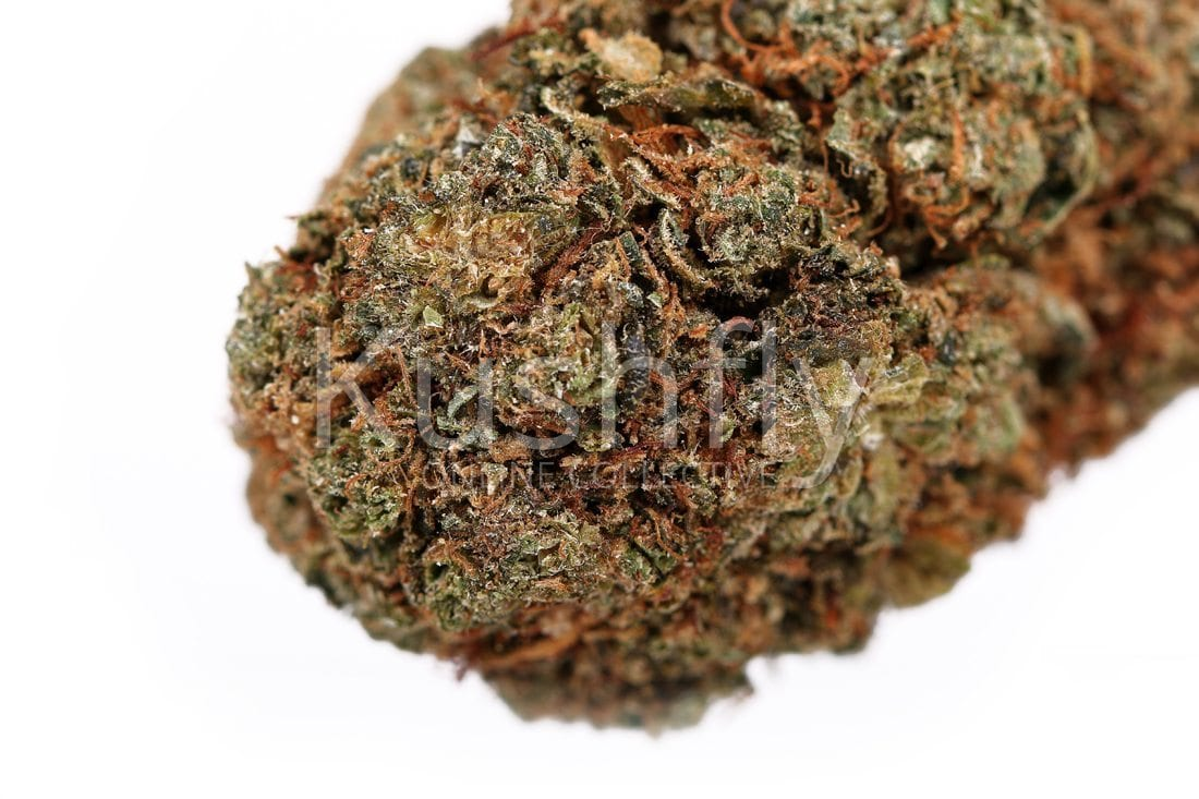 Mint Og Strain Cannabis Delivery And Information Kushfly Com