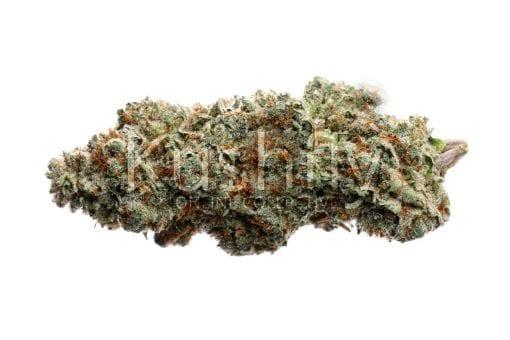Truffle OG cannabis strain