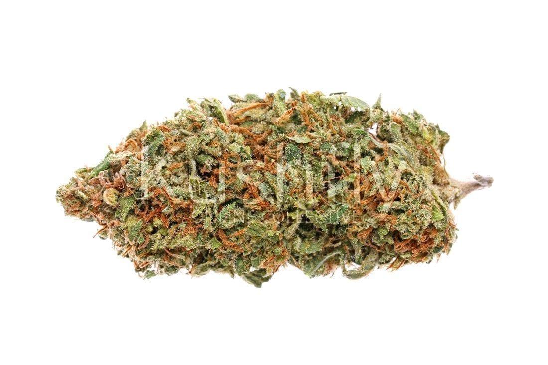 Alaskan Thunder Fuck Cannabis Strain