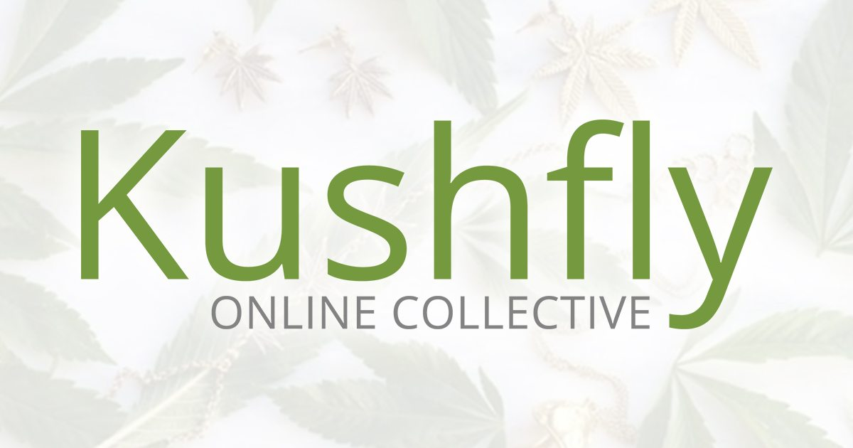 Image result for kushfly