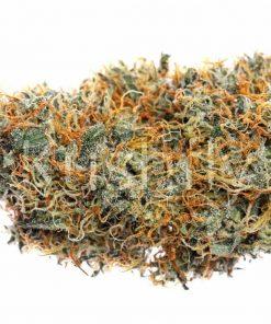 J-1 Cannabis Strain