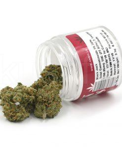 Knbis Black Jack Marijuana Delivery