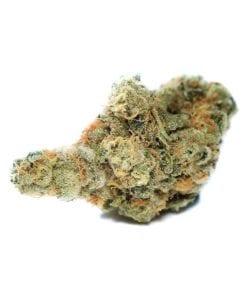 KNBIS Garlic Cookies Marijuana Delivery