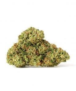 KNBIS Double Dragon Marijuana Delivery