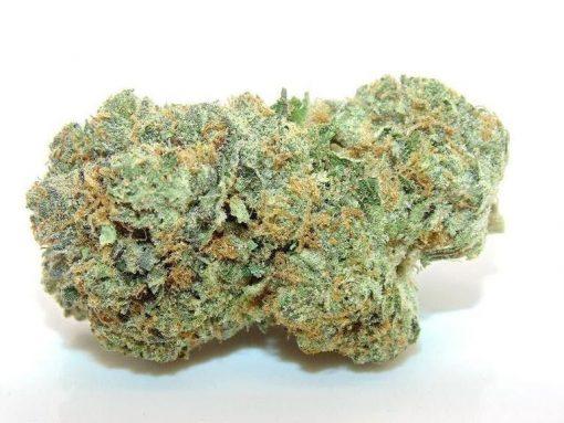 Knbis Slurricane Marijuana Delivery