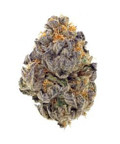 Knbis Blueberry Cookies Marijuana Delivery