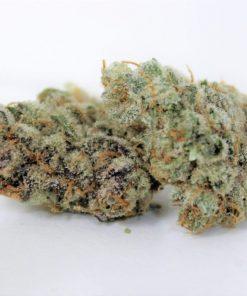 Power Flower Vanilla Gorilla 3.5g Marijuana delivery