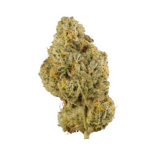 Can Of Bliss Xibalba 3.5g Marijuana Delivery