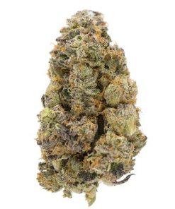 LA Weeds Yoda OG