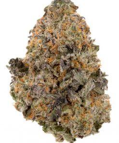 LA Weeds Sherbalato Marijuana Delivery