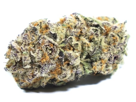 Purple Punch Strain Review