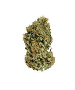 Cali Kush Co. Feild Trip Marijuana Delivery