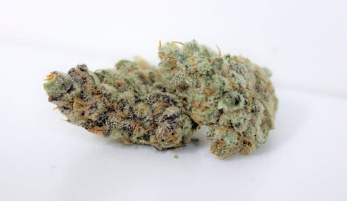 Grape Girl Scout Cookie Marijuana Delivery