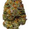 LA Weeds Twisted Citrus Marijuana Delivery