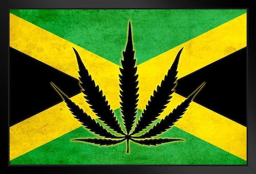 Jamaica's Government Wants to Talk to Trump About Marijuana