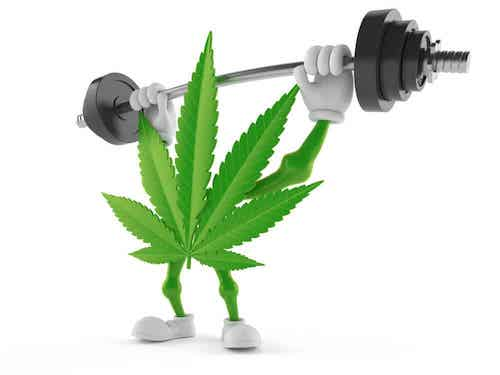 Marijuana Strains That Can Improve Your Workout