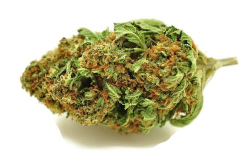 Rockstar OG Marijuana Delivery