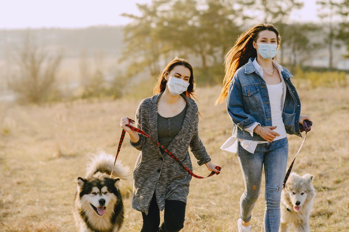 Post Malone's Hemp Company Donates 40k Face Masks