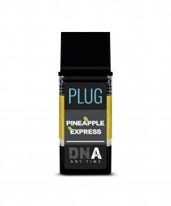 PLUG DNA Pineapple Express