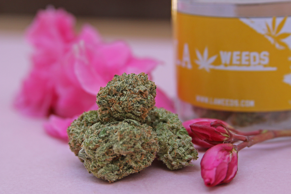 Here's Which Cannabis Strains To Pair With Your Workout