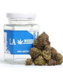 LA Weeds Gelatti
