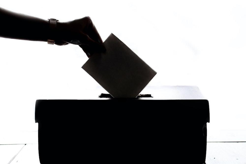 5 Cannabis Strains To Help Get You Through Election Season