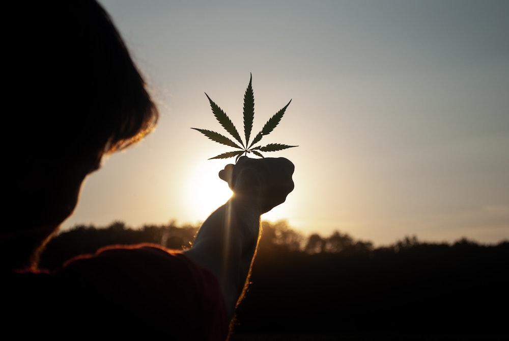 Amid-Pandemic,-More-People-Are-Replacing-Alcohol-With-Weed
