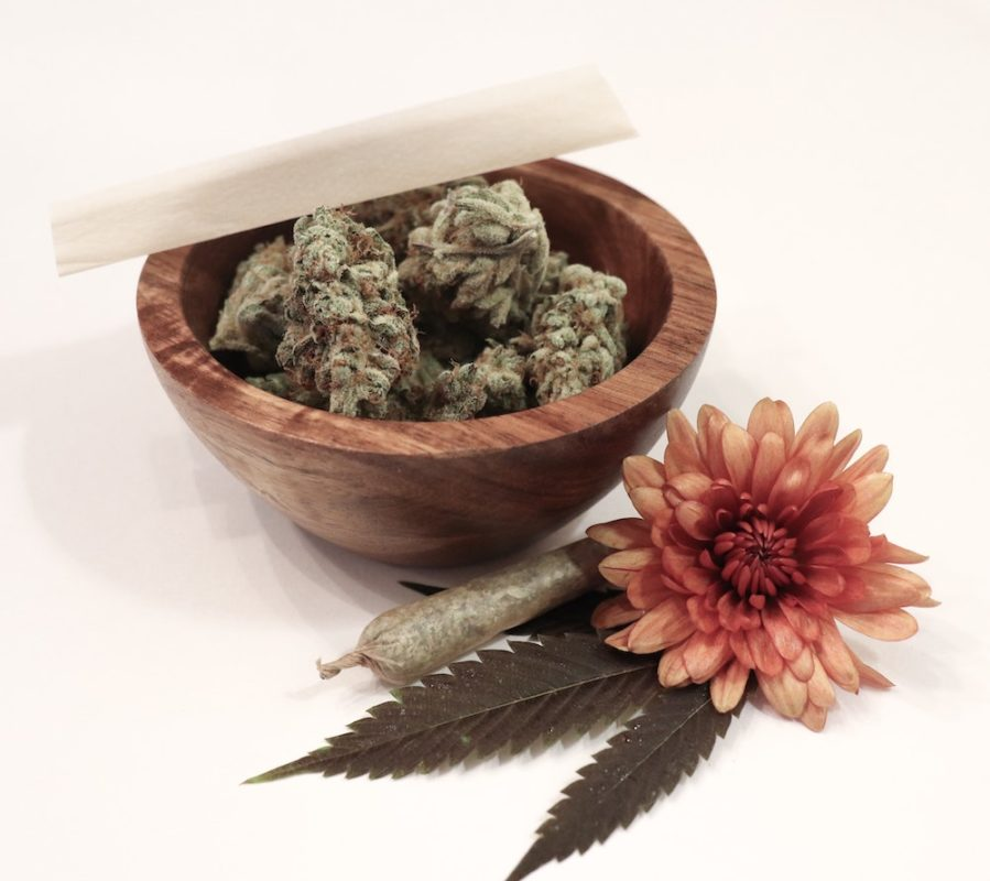 What-Are-The-Best-Sativa-Strains?