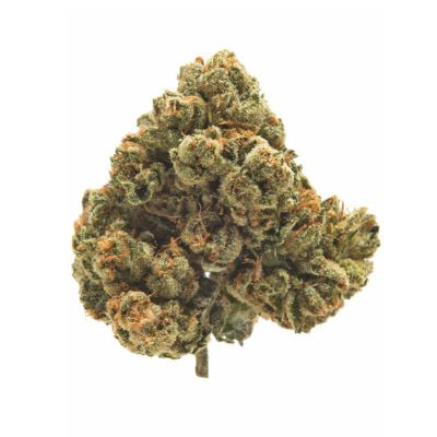 Gas Mask Review & Information